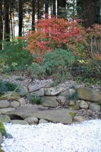 紅葉のドウダンツツジと枯山水 ①